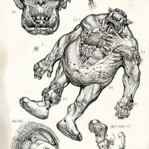 Ork dissection